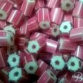 Cvijetic 700x350-001